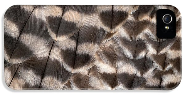 Saker Falcon Wing Feathers Abstract IPhone 5s Case by Nigel Downer