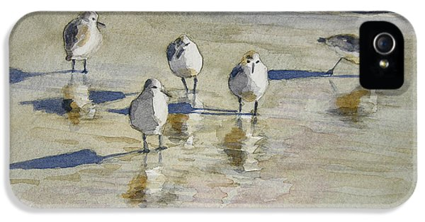 Sandpiper iPhone 5s Case - Sandpipers 2 Watercolor 5-13-12 Julianne Felton by Julianne Felton