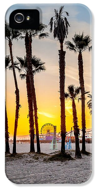 Santa Monica iPhone 5s Case - Santa Monica Palms by Az Jackson