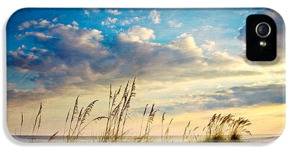 Beach iPhone 5s Case - Sea Oats Sunset by Joan McCool