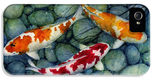 Serenity Koi IPhone 5s Case by Hailey E Herrera