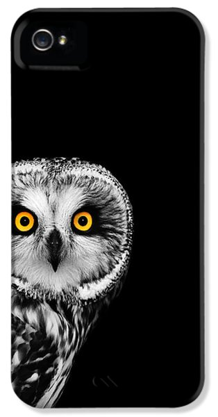 Short-eared Owl IPhone 5s Case by Mark Rogan