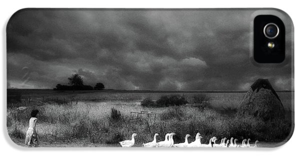 Goose iPhone 5s Case - Sicily by Holger Droste