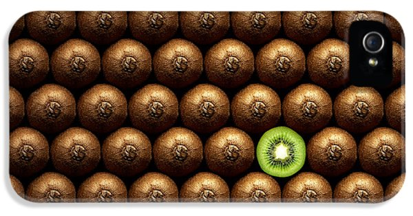 Sliced Kiwi Between Group IPhone 5s Case by Johan Swanepoel