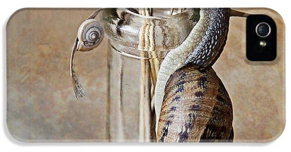 Snails IPhone 5s Case
