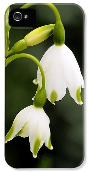 Snowbells In Spring IPhone 5s Case