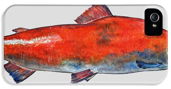 Sockeye Salmon IPhone 5s Case by Juan  Bosco