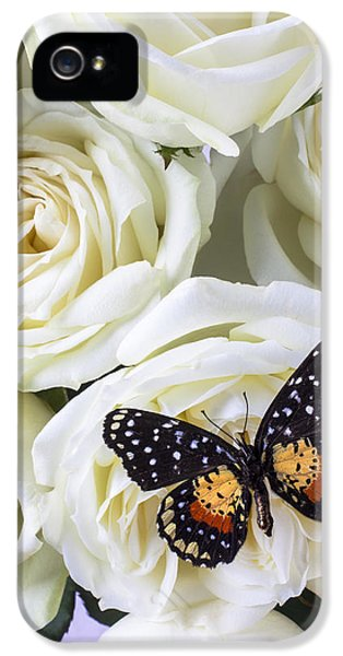 Rose iPhone 5s Case - Speckled Butterfly On White Rose by Garry Gay