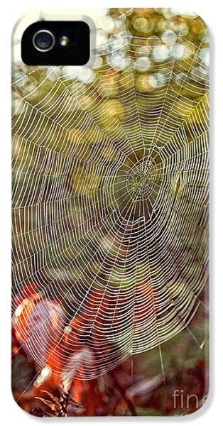 Spider Web IPhone 5s Case