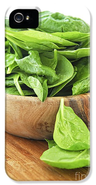 Spinach iPhone 5s Case - Spinach by Elena Elisseeva