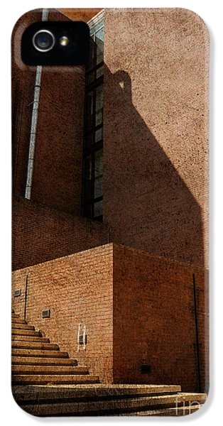 Stairway To Nowhere IPhone 5s Case by Lois Bryan