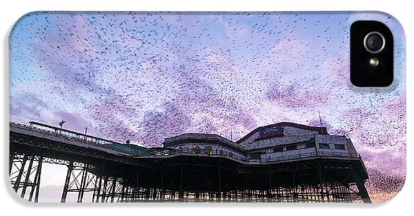 Starling Flock Over Blackpool North Pier IPhone 5s Case