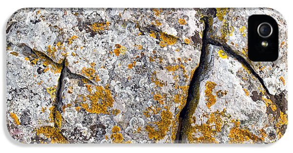 Stone Background IPhone 5s Case by Sinisa Botas