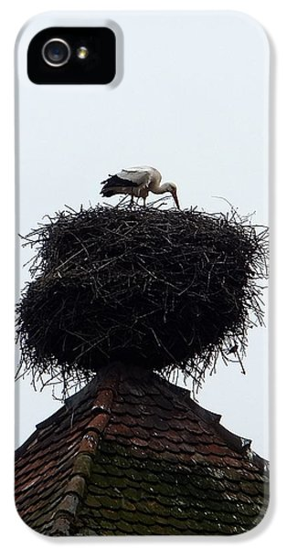 Stork IPhone 5s Case
