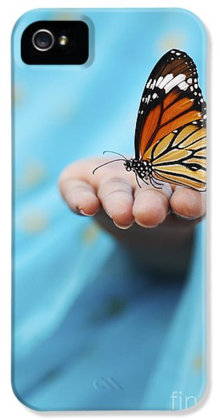 Striped Tiger Butterfly IPhone 5s Case by Tim Gainey