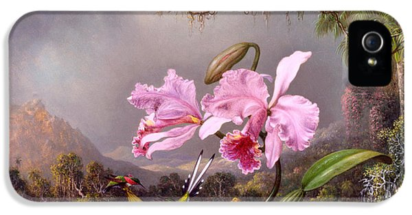 Humming Bird iPhone 5s Case - Study Of An Orchid by Martin Johnson Heade