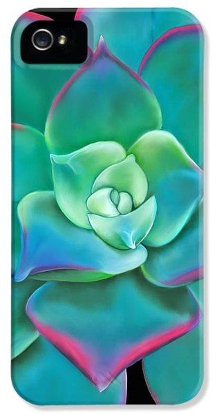 Succulent Aeonium Kiwi IPhone 5s Case by Laura Bell