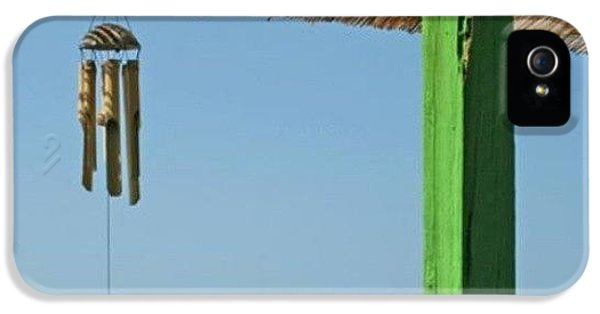 Sunny iPhone 5s Case - Summer! by Emanuela Carratoni