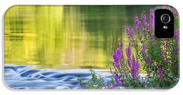 Summer Reflections IPhone 5s Case by Bill Wakeley