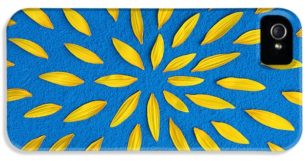 Sunflower Petals Pattern IPhone 5s Case by Tim Gainey