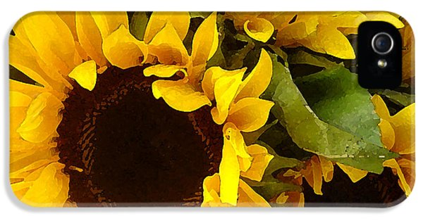 Sunflowers IPhone 5s Case by Amy Vangsgard
