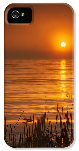 Sunrise Through The Fog IPhone 5s Case by Scott Norris