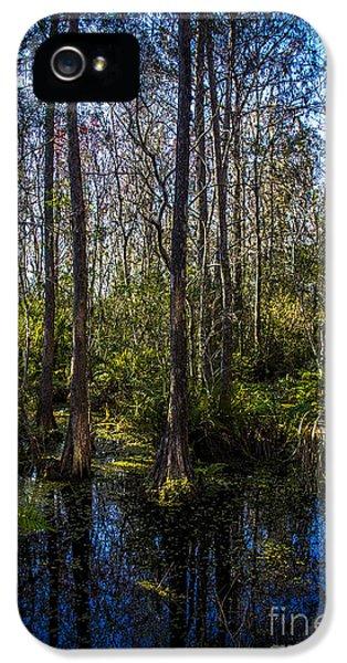 Swampland IPhone 5s Case