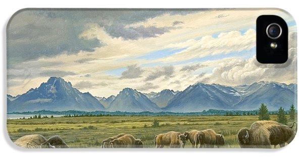 Tetons-buffalo  IPhone 5s Case by Paul Krapf
