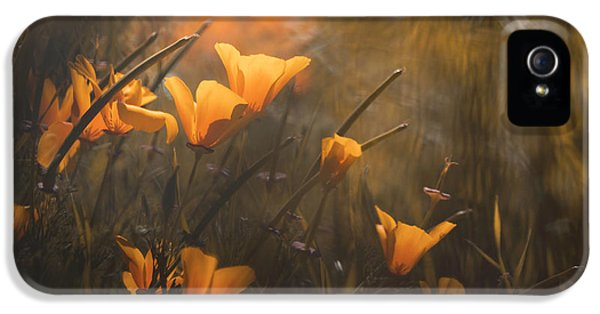 Macro iPhone 5s Case - The Boys Are Back by Fabien Bravin