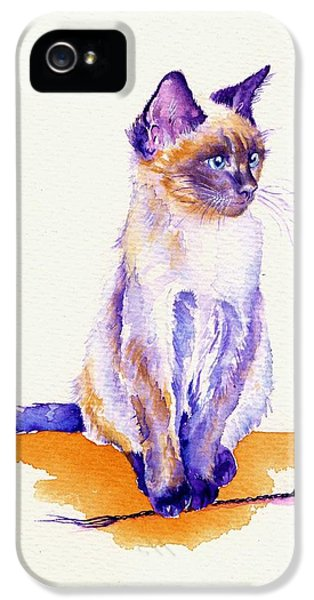 Cat iPhone 5s Case - The Catmint Mouse Hunter by Debra Hall