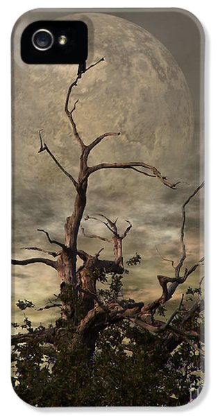 Planets iPhone 5s Case - The Crow Tree by YoursByShores Isabella Shores