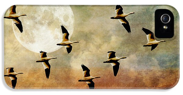 Goose iPhone 5s Case - The Flight Of The Snow Geese by Lois Bryan