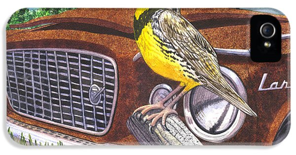 The Meadowlarks IPhone 5s Case by Catherine G McElroy