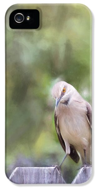 Mockingbird iPhone 5s Case - The Mockingbird by David and Carol Kelly