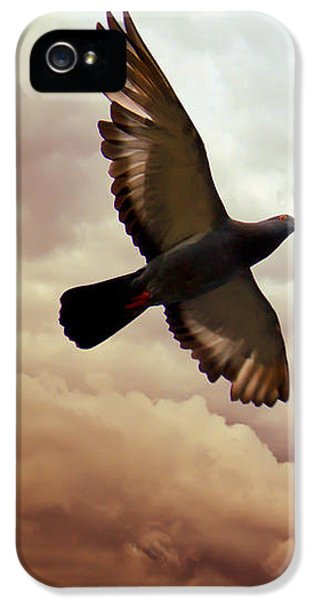 Pigeon iPhone 5s Case - The Pigeon by Bob Orsillo