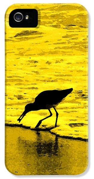 This Beach Belongs To Me IPhone 5s Case by Ian  MacDonald