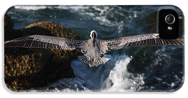 IPhone 5s Case featuring the photograph Through The Eyes Of A Pelican by Nathan Rupert