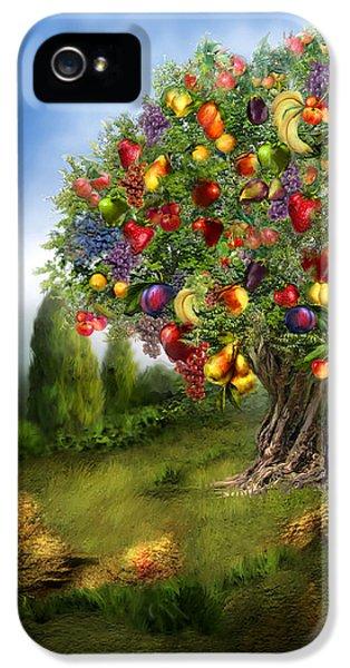 Tree Of Abundance IPhone 5s Case
