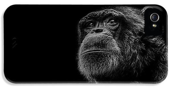 Trepidation IPhone 5s Case by Paul Neville