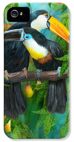 Tropic Spirits - Toucans IPhone 5s Case