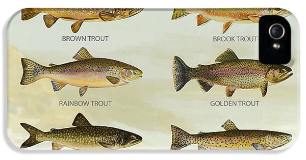 Trout Species IPhone 5s Case by Aged Pixel