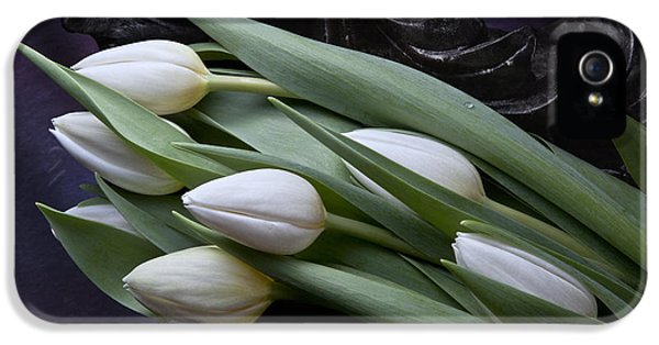 Tulip iPhone 5s Case - Tulips Laying In Wait by Tom Mc Nemar