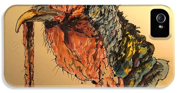 Turkey Head Bird IPhone 5s Case