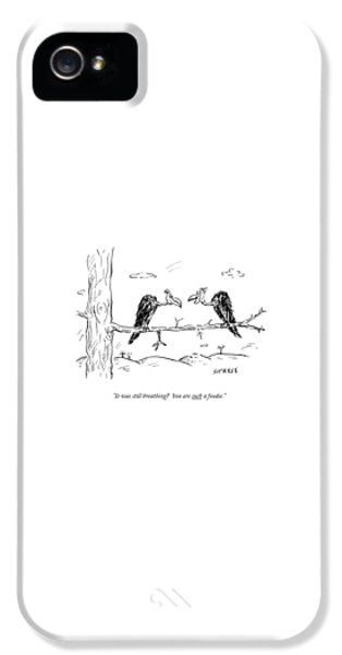 Buzzard iPhone 5s Case - Two Buzzards Sit And Talk On A Branch by David Sipress