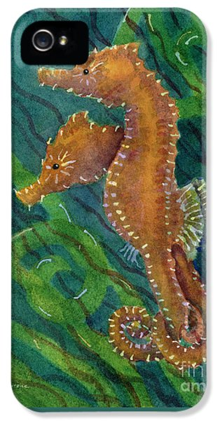 Two By Sea IPhone 5s Case by Amy Kirkpatrick