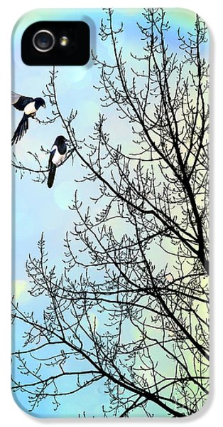 Magpies iPhone 5s Case - Two For Joy by John Edwards