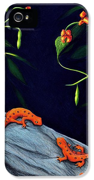 Newts iPhone 5s Case - Understory by Danielle R T Haney