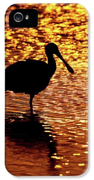 Usa, Florida, Vierra Wetlands IPhone 5s Case