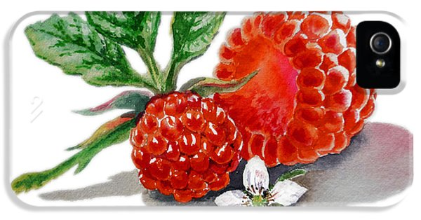 Raspberry iPhone 5s Case - Artz Vitamins A Very Happy Raspberry by Irina Sztukowski