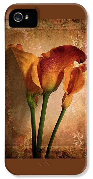 Vintage Calla Lily IPhone 5s Case